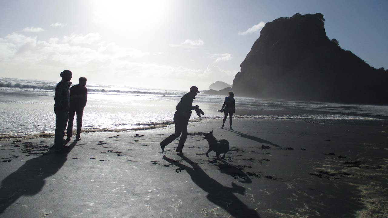 The sun casts shadows on a man who plays with a dog as three others walk along the beach in Auckland, New Zealand