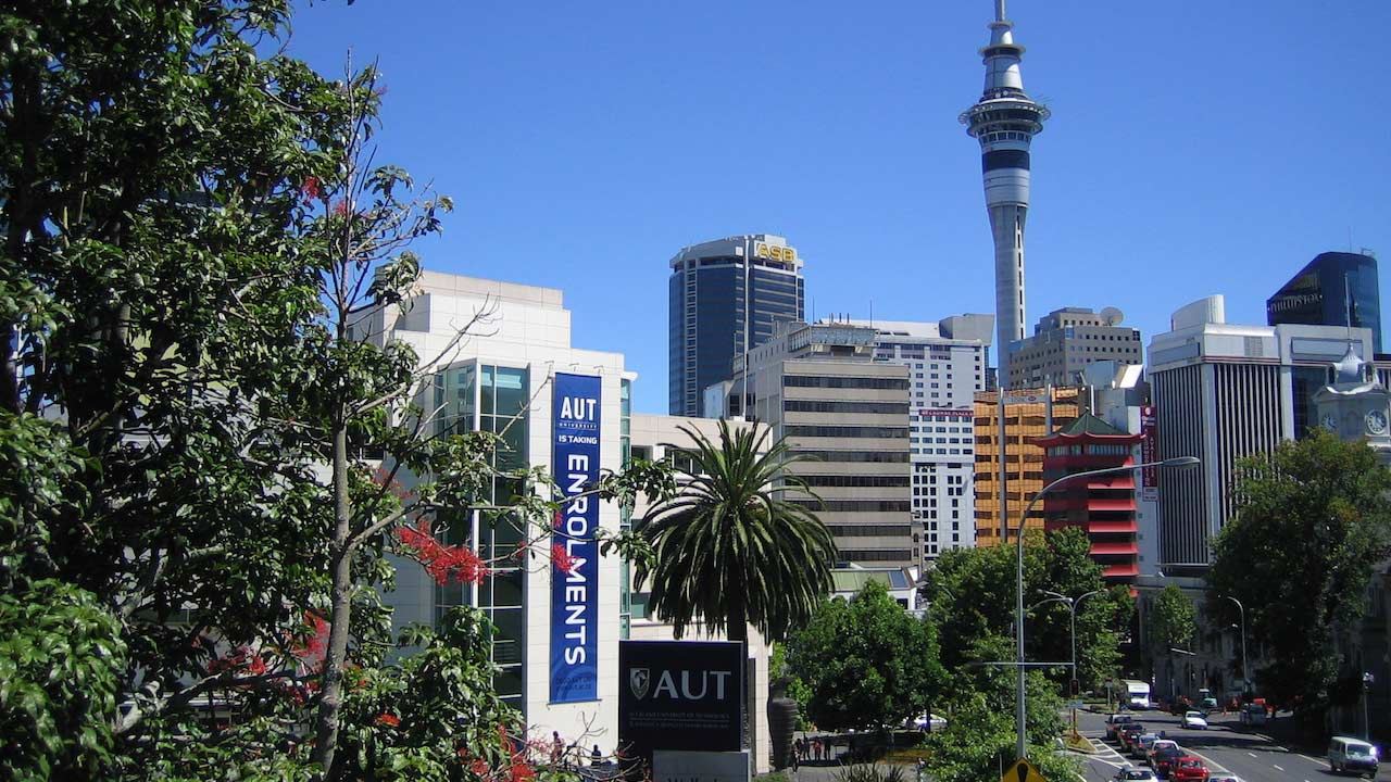Intermitted trees between Auckland's cityscape