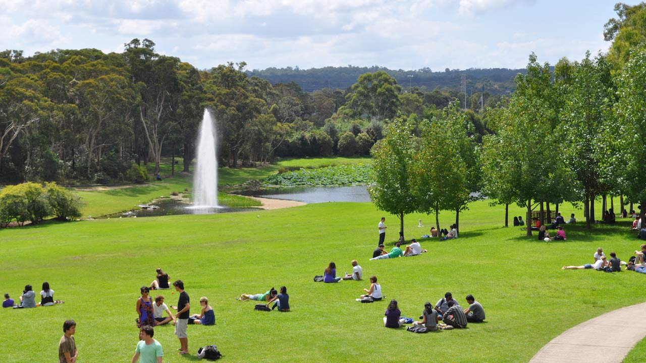 Groups of students lay on the grass on Macquarie University's campus near a flowing water fountain