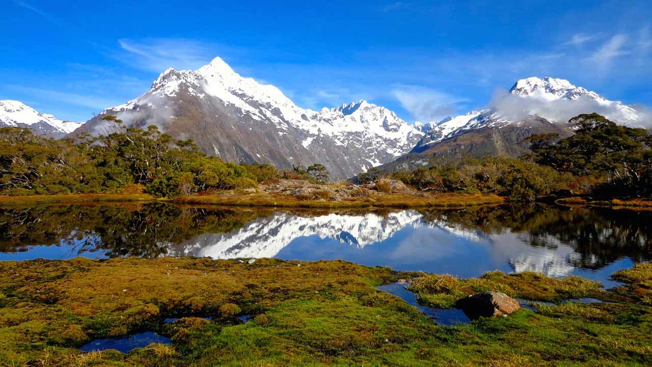 Be surrounded by New Zealand's natural beauty when you intern abroad