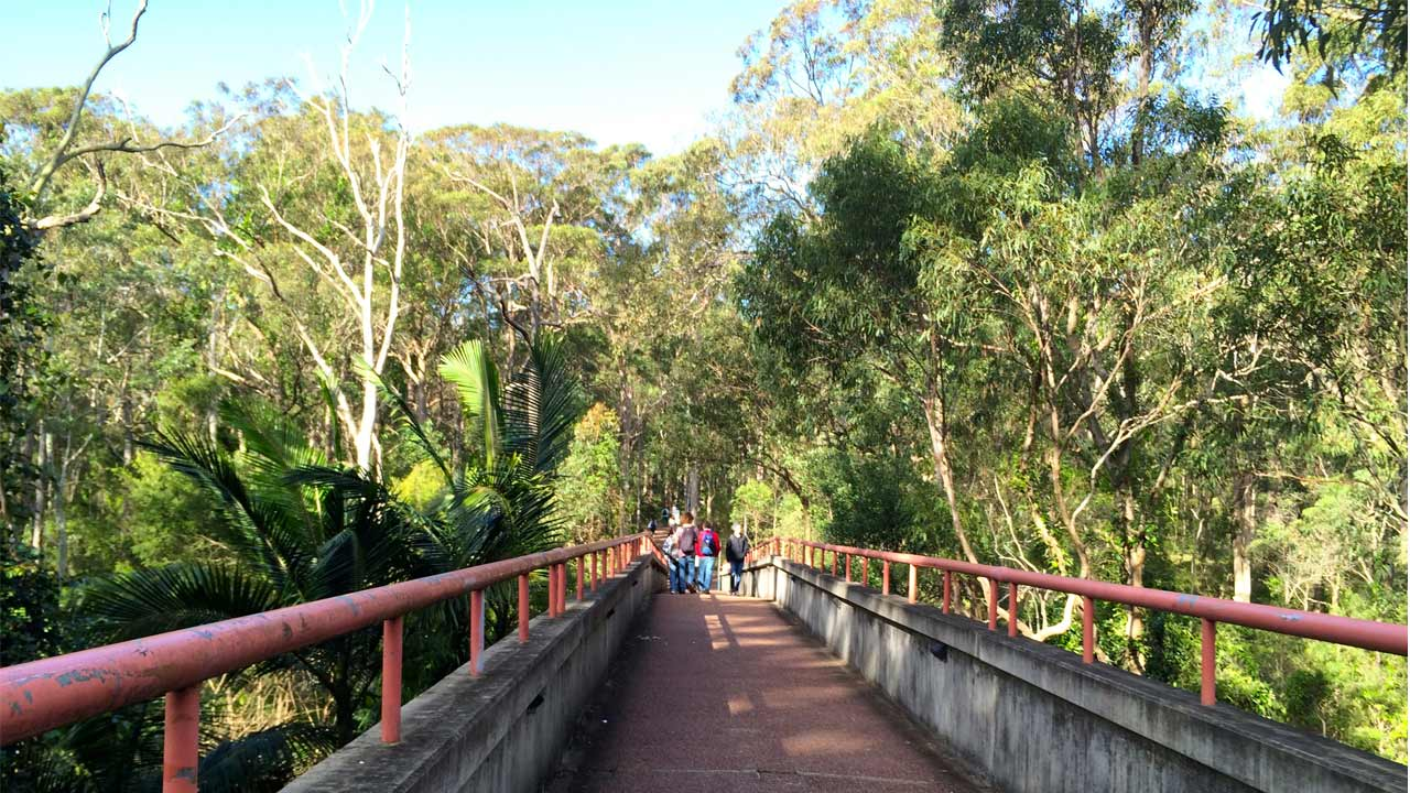 Students walk along a bridge with red iron railings on University of Newcastle's campus
