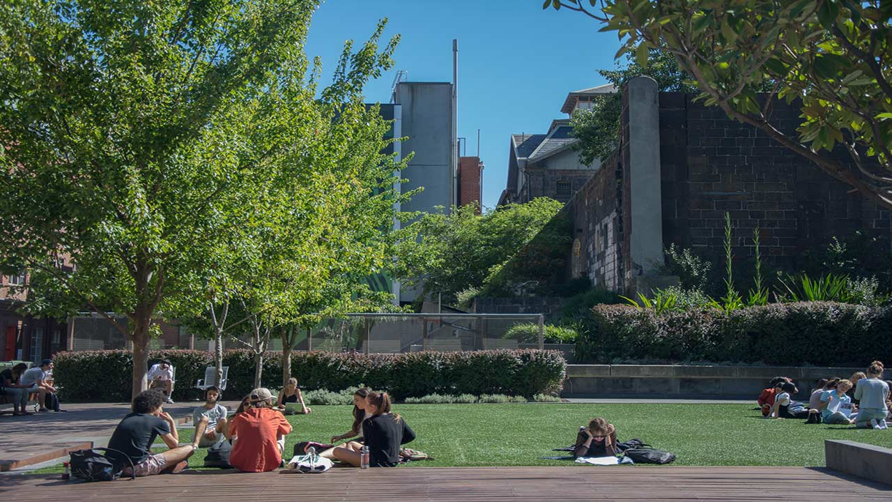 Students gather under a tree on a patch of grass on RMIT's campus