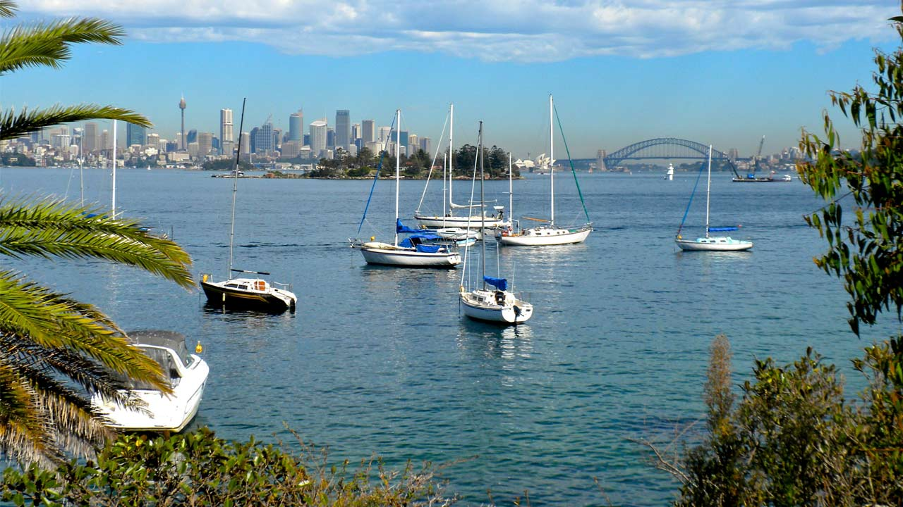 Sailboats docked in the harbour with the Sydney Bridge and city skyline in the background