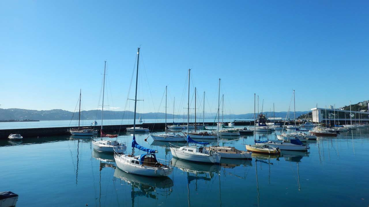 Sailboats docked on crystal clear water in Wellington, New Zealand