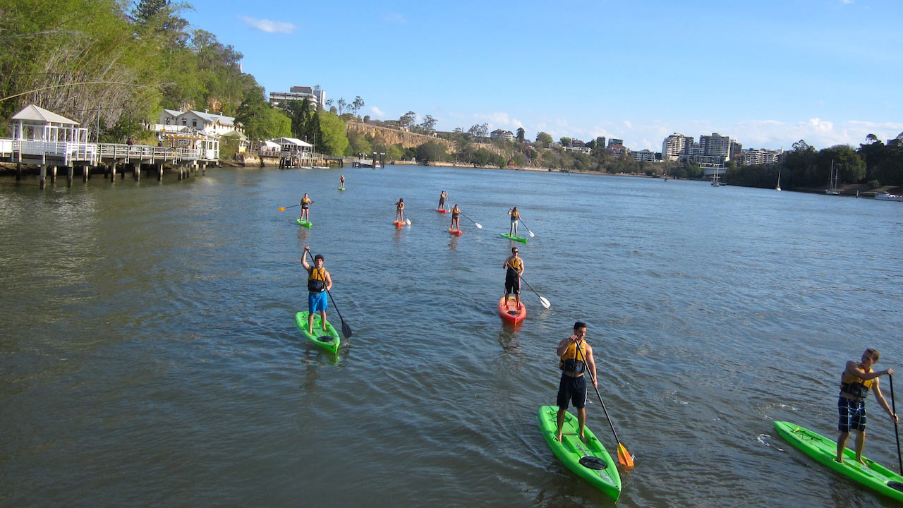 A group of people stand up paddle boarding on a river in Brisbane
