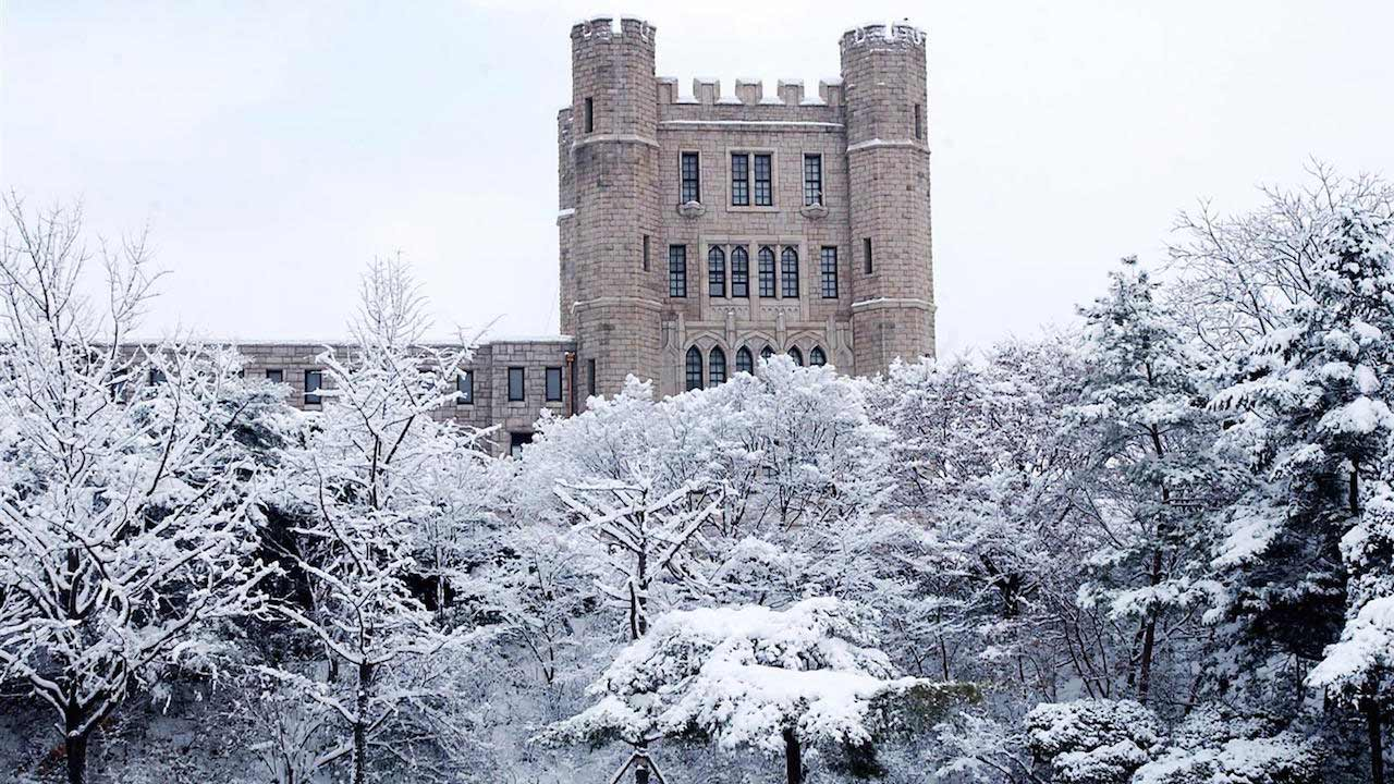 Snow covered trees and the top of a castle-like building on Korea University's campus