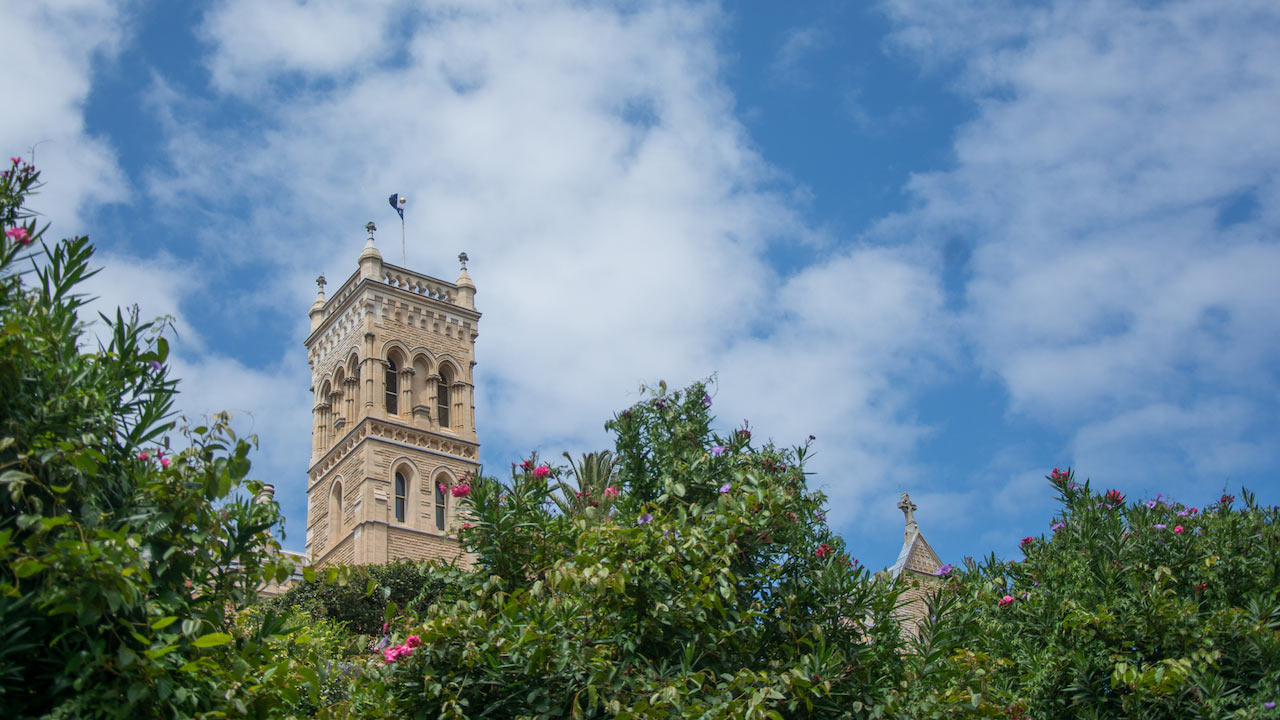 The top of ICMS's main building peeks above a row of purple flowered trees in Manly, Australia
